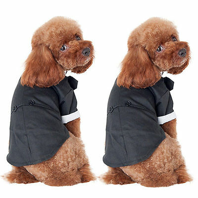 Small Pet Dog Cat Clothing Wedding Suit Tuxedo Bow Tie Puppy Clothes Coat L