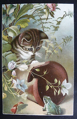 Vintage Cat Postcard- Colourful Cat Postcard, Looking at Frog