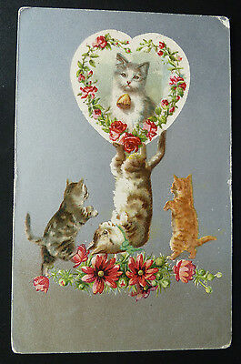 Vintage Cat Postcard-Helena Maguire?- Posted 1908 - Wildt & Kray