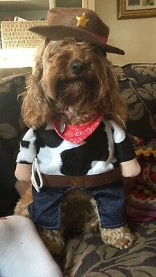 """Dog Outfit Cowboy Hat Bandana Small 15"""" Dressing Up Pre Owned"""