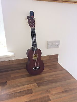 Ukelele With Tuner And Case