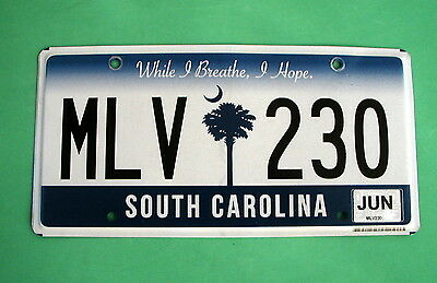 """South Carolina """"While I Breathe, I Hope"""" License Plate MLV 230 See the Pictures"""