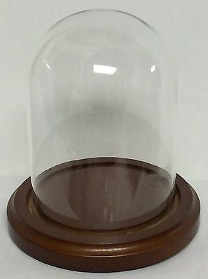 "Clock, Doll or Display Glass Dome 1 7/8"" x 3 1/2""  (Walnut Base) #865 - New"