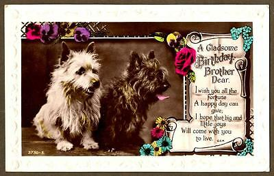 "RPPC ~ CAIRN TERRIERS ~ "" A Gladsome Birthday"" by M.K. & Co. circa 1910"