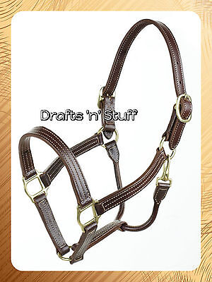 Leather Horse Western Show Halter & Lead With Brass & Stitch Detail