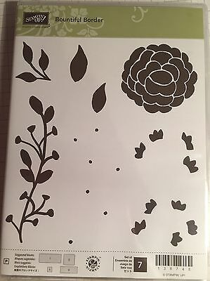 Stampin Up Bountiful Border Clear Mount