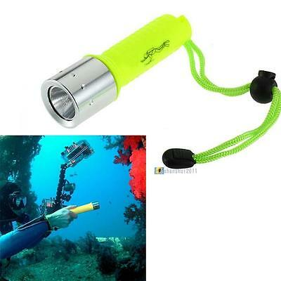 Portable 2500LM CREE XML T6 LED Waterproof Underwater Diving Flashlight Torch SS