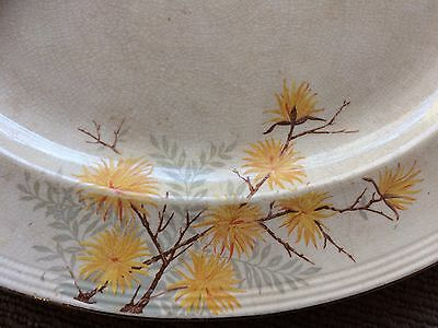 WADE HEATH SERVING PLATE/PLATTER Chrysanthemums circa 1940's