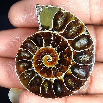 80.90Cts. 100% NATURAL FOSSIL DESIGNER AMMONITE FANCY CABOCHON LOOSE GEMSTONE