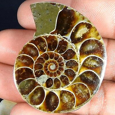99.50Cts. 100% NATURAL FOSSIL DESIGNER AMMONITE FANCY CABOCHON LOOSE GEMSTONE