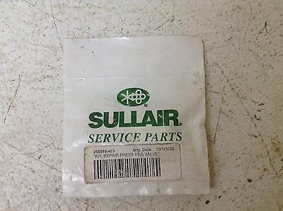 Sullair 250019-453 Repair Kit 250019453 New (TSC)