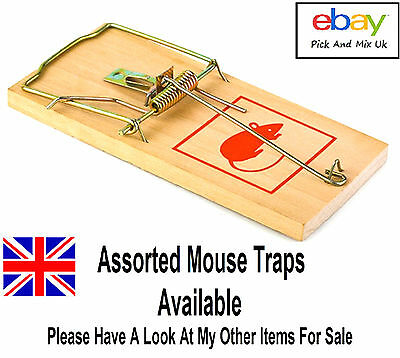 Why Buy Mice Mouse Glue Traps, When You Can Buy The Classic Wooden Trap FOR 99P
