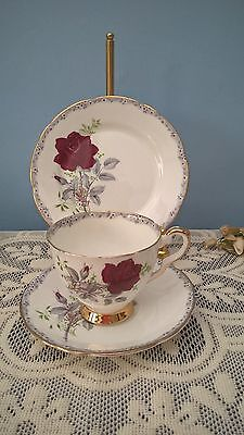 "Vintage Royal Stafford China Trio Tea Cup Saucer Plate ""roses To Remember"""