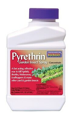 Bonide Pyrethrin Garden Insect Concentrate - 1 Pint