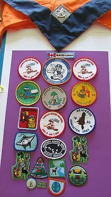 Collection of 19 Beaver Patches, 1 Beaver Neckerchief with Patch & 1 Pin