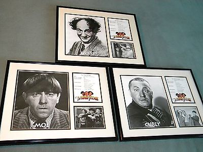 Three Stooges Curly Moe Larry Limited Edition Framed Photo Toon Art with COA