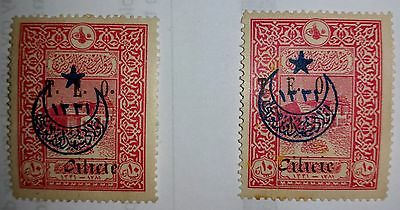 """1919 Turkey (French Occpn) TWO 10 Pa Rose Stamps with """"T.E.O. Cilicie"""" OverPrint"""