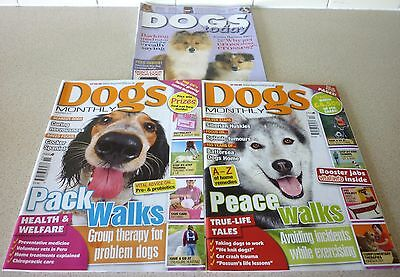 Dogs Monthly 2010 x 2 Issues, Dogs Today October 2011
