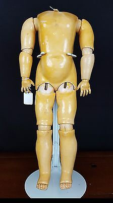 German Jointed Kid Doll Body Antique Comp/Wood Original Finish 19 inch