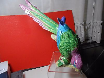 Lynn Chase Vintage Macaw Limited Ed Huge Vibrant Colors Magnificent! Look Wow