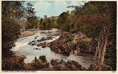 Salmon Catch, River Wye, BUILTH WELLS, Breconshire