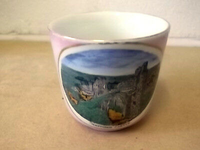 Antique China Cup In Pink Lustre Ware With A Crest / Picture Of Hastings Castle