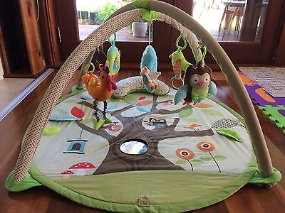 Baby Play Gym - Skip Hop