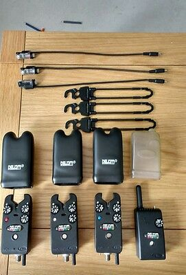 carp fishing set up