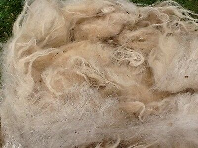 Rare Breed Spinning Felting Wool Fleece Scottish Blackface Raw Whole Fleece