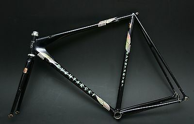 Rare Rychtarski  700/650 Timetrial Lo Pro New Campagnolo Record Headset Fitted