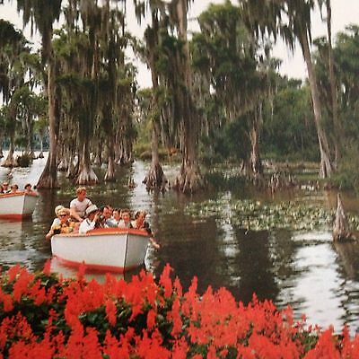 Cypress Gardens Florida Postcard Boats Tourists Water Lily Vintage Color Unused