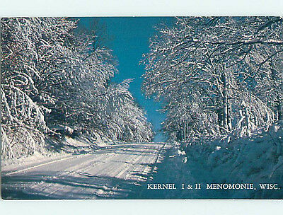 Unused Pre-1980 SNOW-COVERED TREES ALONG THE ROAD Menomonie Wisconsin WI hs3023