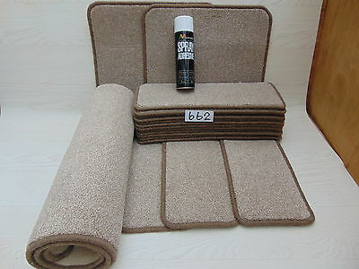 Stair pads / treads 15 off and 3 Big Mats with a FREE can of SPRAY GLUE (662-9)