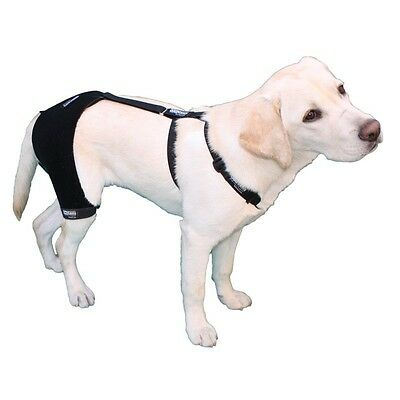 Black Ortocanis Canine/dog Hip & Back Brace Sizes S, M, & L