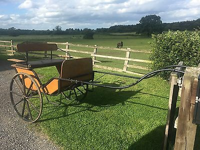 Horse Carriage Trap. Pony Driving.