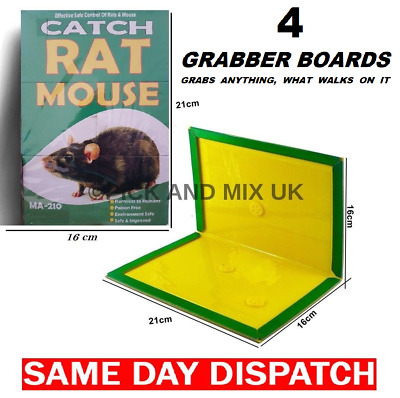 Why Buy Glue Trap When You Can Buy Assorted Mouse Mice Rat Traps From 99P To £50
