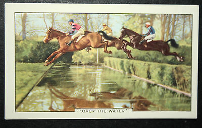 Steeple Chase Water Jump   Vintage Colour Horse Racing Card # VGC