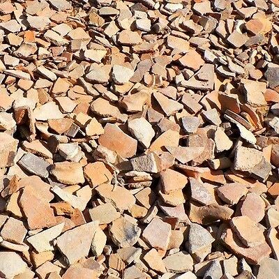 Assorted Ancient Israeli Pottery Shards 2,000 years old