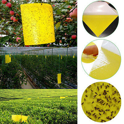 1/5/10PCS Yellow Sticky Glue Flying Pest Insect Papers Traps Catchers Bugs