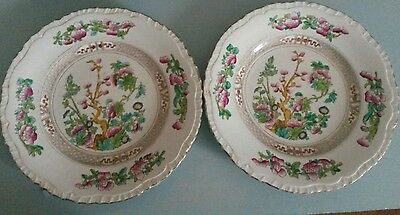 Pair of BOOTHS Indian Tree Pattern decorative tea / lunch plates