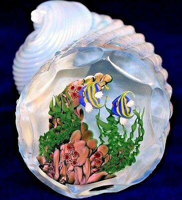 Facinating MAGNUM Studio LUNDBERG Shell AQUARIUM Art Glass PAPERWEIGHT
