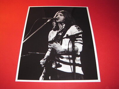 THE EAGLES  10x8 inch lab-printed glossy photo P/2800