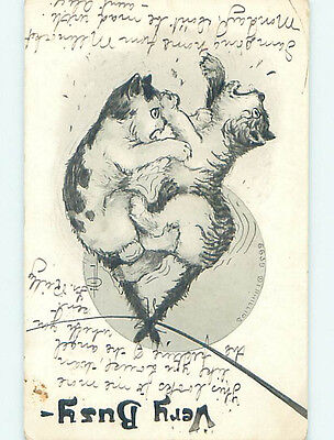 Pre-Linen signed PAIR OF CATS STRUGGLING WITH EACH OTHER HJ4848