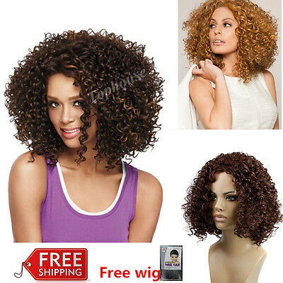 Ladies Kindy Curly Afro Brown Medium Synthetic Hair Full Wig For Black Women