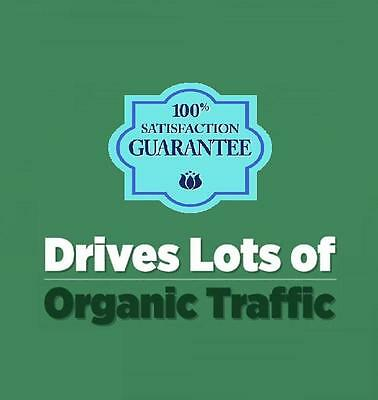 Unlimited Organic Website Traffic Hits For One Month