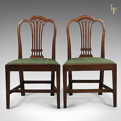 Pair of Antique Chairs, After Hepplewhite, Georgian, English, Dining c.1780