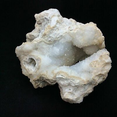 Agatized Fossil Coral with Druzy 170783 425g Metaphysical Emotional Balance