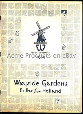 1939 GARDEN Catalog- FLOWER BULBs from HOLLAND- Wayside Gardens- Mentor OH- 80pg