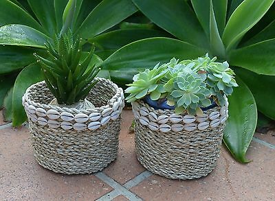 Weaved Natural basket planters with cowrie shells.