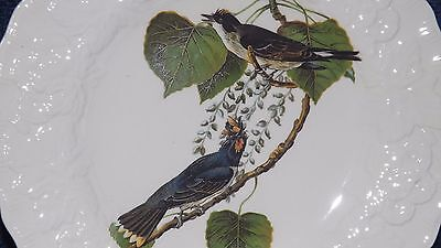 "Alfred Meakin Birds of America by Audubon 9"" Plate #79 KING BIRD EXCELLENT Mint"